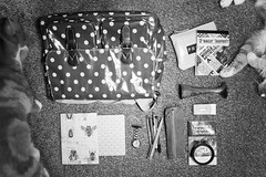 Day Three Hundred and Twenty Five / Year Five. (evilibby) Tags: barnabee ginger cat cats whatsinyourbag pinard fobwatch baillieresmidwivesdictionary notebook pen pebns notepad polkadots bag blackandwhite blackwhite bw project365
