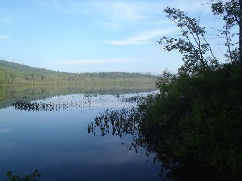 Spectacle Pond - www.amazingfishametric.com
