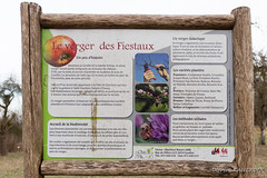 Le verger des Fiestaux (Olivier_1954) Tags: 06000000 06007000 environnement fiestaux iptcnewscodes iptcsubjects nature environmentalissue verger charleroi wallonie belgique be