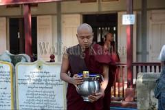 30099742 (wolfgangkaehler) Tags: 2017 asia asian southeastasia myanmar burma burmese mandalay mahagandayonmonastery mahagandayonmonastary people person monks buddhist buddhistmonasteries buddhistmonastery buddhistmonk buddhistmonks almsceremony almsbowls meal