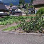 Siedlung in Gokayama