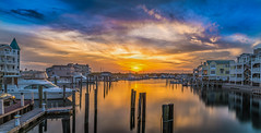 Marina Sunset (P.E.T. shots) Tags: