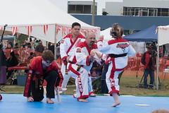 DC0_1134 (Eisbier) Tags: sport alaska training demo centennial do martial arts martialarts taekwondo celebration anchorage tae tkd kwon champ champmartialarts