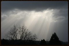 God's Rays on a wet day (Zelda Wynn) Tags: winter nature weather crepuscularrays troposphere westauckland zeldawynnphotography