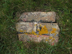 Masonry (Jan Egil Kristiansen) Tags: grass bricks lichen faroeislands lav murstein nlsoy img9879