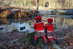 Besuch am Ententeich ... (Kindergartenkinder) Tags: dolls himstedt annette kindergartenkinder park herbst sony ilce6000 personen kind annemoni dülmen tivi