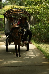 Horse Drawn Carriage (steve_whitmarsh) Tags: vietnam asia orient mekong street
