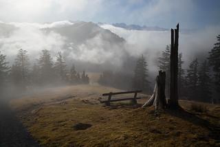 between sun and fog