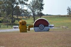 """PokeHAYmon"" (Jake (Studio 9265)) Tags: hay bale art creative display artwork country rural usa united states america todd county ky kentucky fall 2016 pokemon pikachu pokeball"