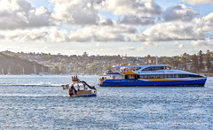 63+179: Drag race, any one? (geemuses) Tags: manly manlycove manlybeach manlyfastferry swimmers oceanswimmers oceanswimming sea water beach exercise sun shadow sunrise landscape scenic sydneyharbour