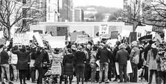 2017.01.29 Oppose Betsy DeVos Protest, Washington, DC USA 00256