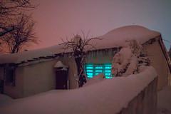Untitled (elsableda) Tags: wonderland winter house snow snowy cold istanbul dark night tree haunting beautiful elsa bleda window light lights