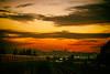 Nothing Gold Can Stay (Thomas Hawk) Tags: bart california oakland usa unitedstates unitedstatesofamerica freeway sunset fav10 fav25 fav50