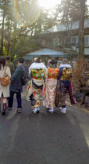 Adult way (sapphire_rouge) Tags: kimono 振袖 着物 晴着 girl lady 吉祥寺 東京 公園 tokyo park 井の頭公園 kichijyoji inokashirapark
