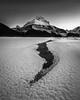 Tangle Peak, Jasper National Park (WherezJeff) Tags: alberta canada jaspernationalpark tanglepeak winter jasper ca blackandwhite frostflowers water sunwapta focusstacking composite