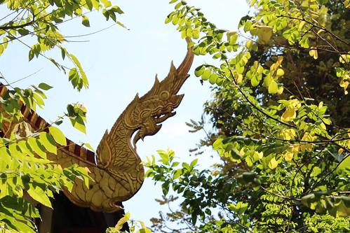 Thai roofs