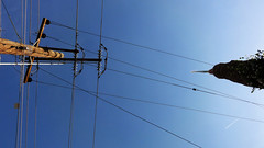 Poste y Palma 03243 (Omar Omar) Tags: mexicali méxico mexique bajacalifornia bc bassecalifornie electricidad electricity poste lightpost electriccables palm palmtree palma america