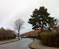 Gentofte - Rygårds Allé (1921-24) (annindk) Tags: hellerup bedrebyggeskik gardencities streetscenes