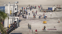 Terminal 2 (robertjamesstarling) Tags: shooter gunman killed dreadful airport terminal 2 evacuation fort lauderdale