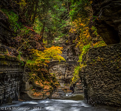 EM-161023-POST-001 (Minister Erik McGregor) Tags: 2016 art erikmcgregor fingerlakes nysparks newyork photooftheday photography tremanstatepark 9172258963 erikrivashotmailcom ©erikmcgregor uppergorge fall ‪gorge‬ ithaca waterways outdoors waterfalls water waterislife habitat nature outdoorlife roadtrip hiking trail amazingplanet longexposure panorama vertorama naturephotography roberttremanstatepark roberthtremanstatepark nikon nikonphotography 2017