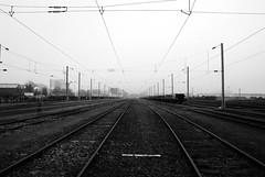 île de Nantes (à l'oeil de verre photographie) Tags: àloeildeverrephotographie nantes 44 loireatlantique férroviaire sncf train caténaire rail railroad railway brouillard waggon wagon