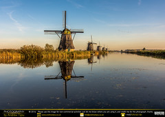 Windmills and Waterways (andrewtijou) Tags: andrewtijou nikond7200 europe eu netherlands thenetherlands holland southholland zuidholland rotterdam kinderdijk winmills windmill water reflections reeds river canal haze sky yellow blue nl
