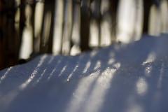 the frozen warmth of the sun (1crzqbn) Tags: sliderssunday macro shadows sunlight abstract bokeh blur dof
