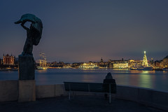 Stockholm (tommyferraz) Tags: stockholm sweden sverige skyline water sea river boat sightseeing travel city night photography cityscapes nightscapes christmas tree jul castle gamla stan