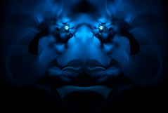 I'm you nightmare (Luc H.) Tags: digital fractal abstract graphic graphism design