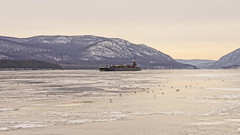 ATB Barney Turecamo (thetrick113) Tags: morantowingcorporation moran morontugboat tugboatbarneyturecamo sonyslta65v moranbargegeorgia barge bargegeorgia hudsonriver river hudsonvalley hudsonrivertugboat hudsonrivervalley hudsonhighlands newburghnewyork beaconnewyork hudsonriverice ice winter 2017 winter2017 atb mountbeacon mtbeacon snow petroleumbarge petroleum upbound northbound