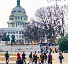 2017.01.29 Oppose Betsy DeVos Protest, Washington, DC USA 00199