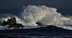 January26Image9939 (Michael T. Morales) Tags: wave pacificgrove ptpinos wavecrashing montereybay rocks