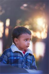 Long way to go bud (Ethan|xxvi) Tags: son love sweet child adorable autumn sunset soft outdoor portrait kidsphotography lights fallcolours lake tree eyes evening ethanxxvi beautiful canon canon5d 100mm 100mm28f macro depthoffield cloths softlight