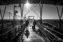L'aventure (Laurent VALENCIA) Tags: stairs train gare paca provence quai tgv aix sud matin magiclantern escaliers attente passerellle dualiso