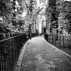 Leicester. (stephenlamb) Tags: square path leicester squareformat inkwell instagramapp uploaded:by=instagram