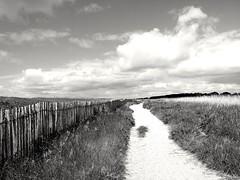 Walking along the fence (christiane.grosskopf) Tags: bw france clouds fence landscape blackwhite frankreich brittany wolken bretagne coastline schwarzweiss zaun footpath kste marramgrass sandweg dnengras samsungs4 samsungs4galaxy
