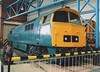 "BR Blue Class 52, 'Whizzo' D1023 ""Western Fusilier"" (37190 ""Dalzell"") Tags: brblue maybach dieselhydraulic western whizzo class52 d1023 westernfusileer nrm nationalrailwaymuseum york"