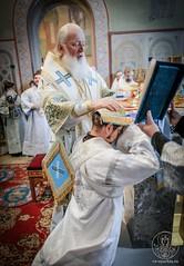 Литургия в Софийском соборе 530