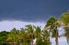 DSC_1698.jpg (Renato Caldeira) Tags: rancho paulicéia 1701 por do sol coqueiro pordosol ranchopaulicéia1701