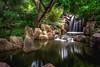 Chinese Garden, Sydney (satochappy) Tags: garden chinesegarden sydney waterfalls green trees rocks australia chinesegardenoffriendship darlingharbour