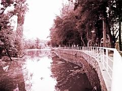 Teuchitlan, Jalisco (me_boss) Tags: malecón sidewalk river