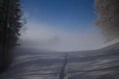 Haute Route Tösstal (ZH) (Toni_V) Tags: m2402931 rangefinder digitalrangefinder messsucher leicam leica mp typ240 type240 28mm elmaritm12828asph snowshoeing schneeschuhwanderung schneeschuhlaufen hauteroutetösstal zürich zurich zürcheroberland switzerland schweiz suisse svizzera svizra europe fog nebel mist winter schnee snow trail sky ©toniv 2017 170121