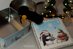49 Where Have All The Cookies Gone? | Wo Sind All Die Plätzchen Hin? (jensfechter) Tags: christmas weihnachten baum tree suche search schauen blick looking look box keksdose dose elements enter penguin pinguin where have all the cookies gone wo sind die plätzchen hin essen food empty rooms leere räume penguinfriday stuffedanimal stofftier weiserhintergrund whitebackground fun spass spas