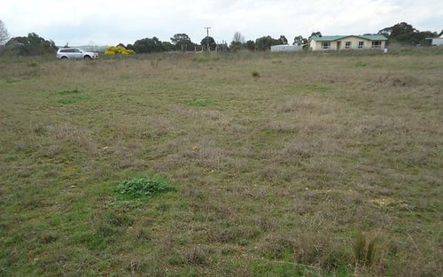 Lot 105 Manor Hills off Surry Street, Collector NSW 2581