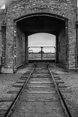Auschwitz (salvatore falzone) Tags: auschwitz polonia prigione recinzione muro esterno bianconero campo prigionieri olocausto binari ricordi ricordo canon 7d canoniano