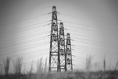 It's electric! (kwtracyghostship) Tags: bw pennsylvania westernpa blackwhite kwtracyghostship electricity alleghenycounty powerlines jeffersonhills unitedstates us moody industrial depthoffield flickr noir platform steel girder winter foreboding