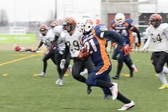 4D3A2991 (marcwalter1501) Tags: minotaure tigres strasbourg footballaméricain football sportdéquipe sport exterieur match nancy