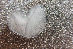 Macro Mondays: Heart (Legodude:)277) Tags: heart macromondays ice song lyrics