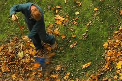 FP_1034 (ILikeTakingDigitalPhotos) Tags: fall upstatenewyork albanynewyork 2011