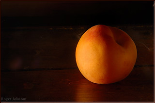 Apricot ~~ A Delicious Subject